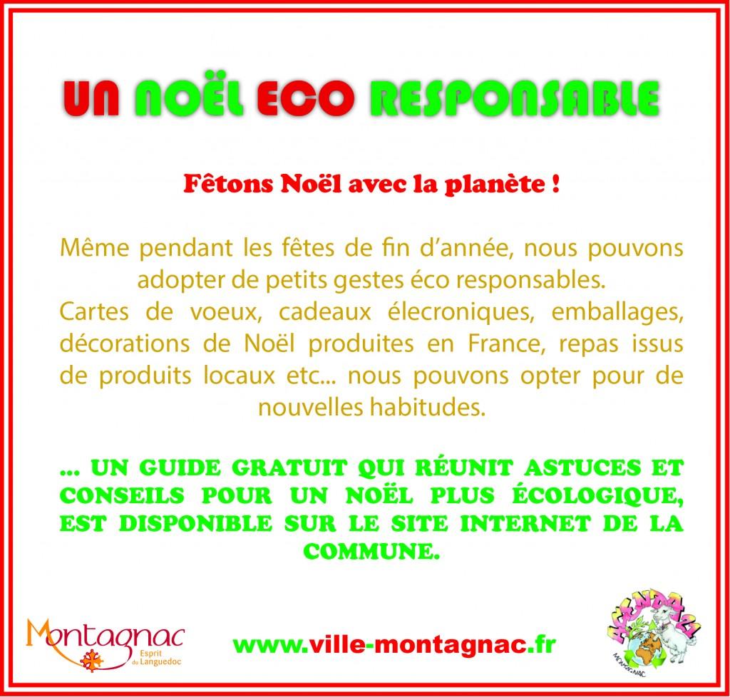 Noël Eco Responsable3